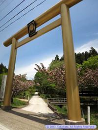 黄金色に輝く黄金山神社の鳥居