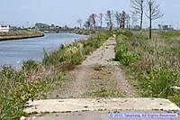 貞山運河と仙台亘理自転車道
