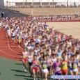 仙台ハーフマラソン