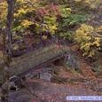 二口渓谷の紅葉