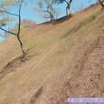 岩切城跡(高森城跡)