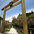 黄金山神社の黄金の鳥居