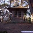金翅堂(達麿堂)