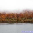 霧の須川湖