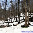 木道にはまだ多くの残雪が