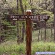 昭和万葉の森