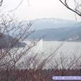 虎岩展望台からの眺め